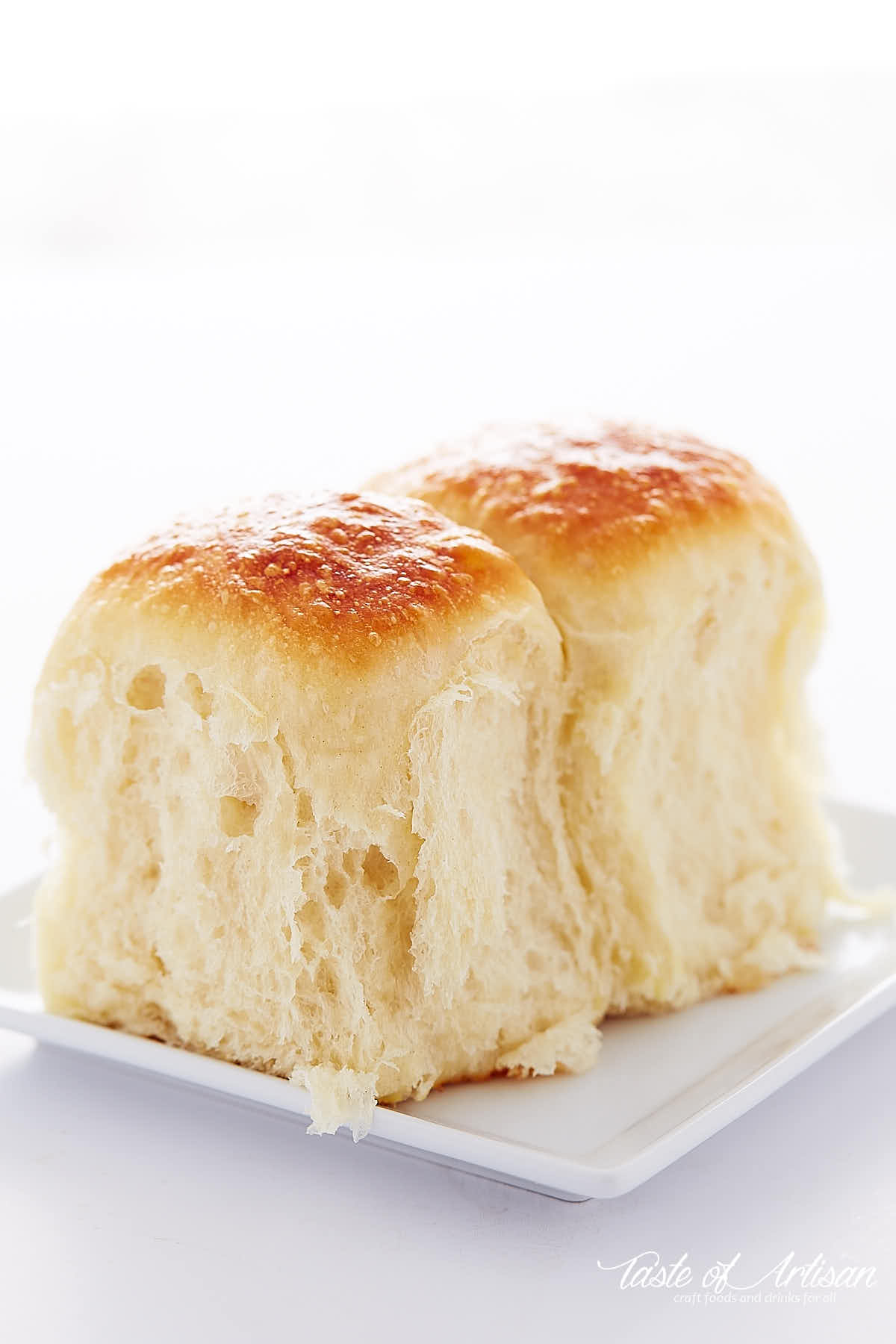 Two yeast rolls with golden brown tops on a white plate.