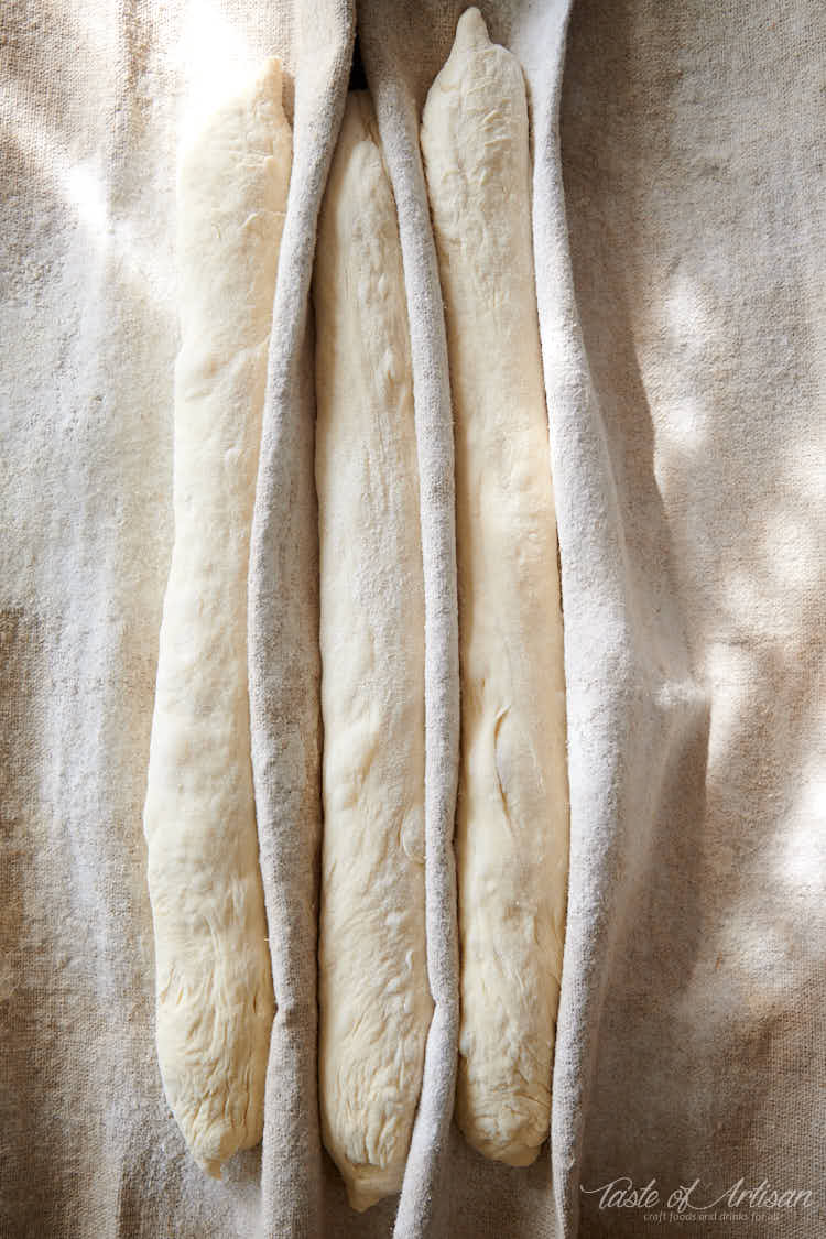 Baguettes proofing on a floured couche.