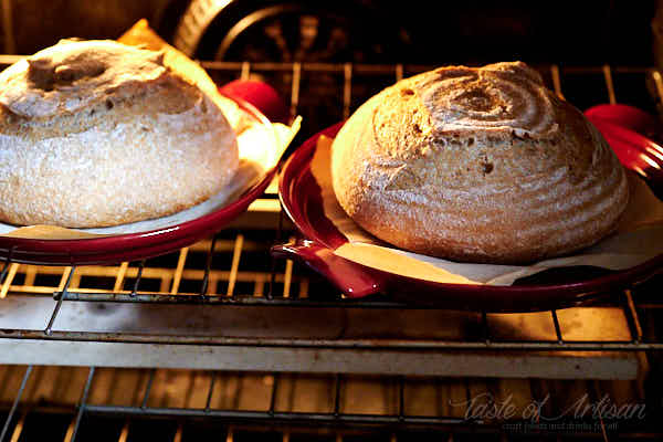 Two bread loaves baking in the oven.