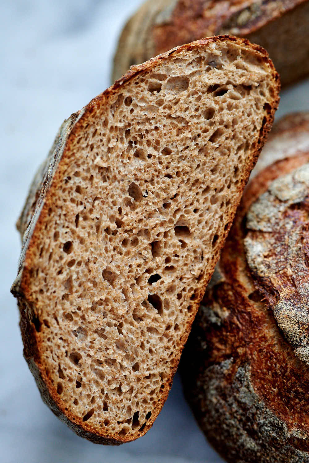 A cross cut of whole wheat sourdough bread with 75% whole wheat flour and 25% bread flour..