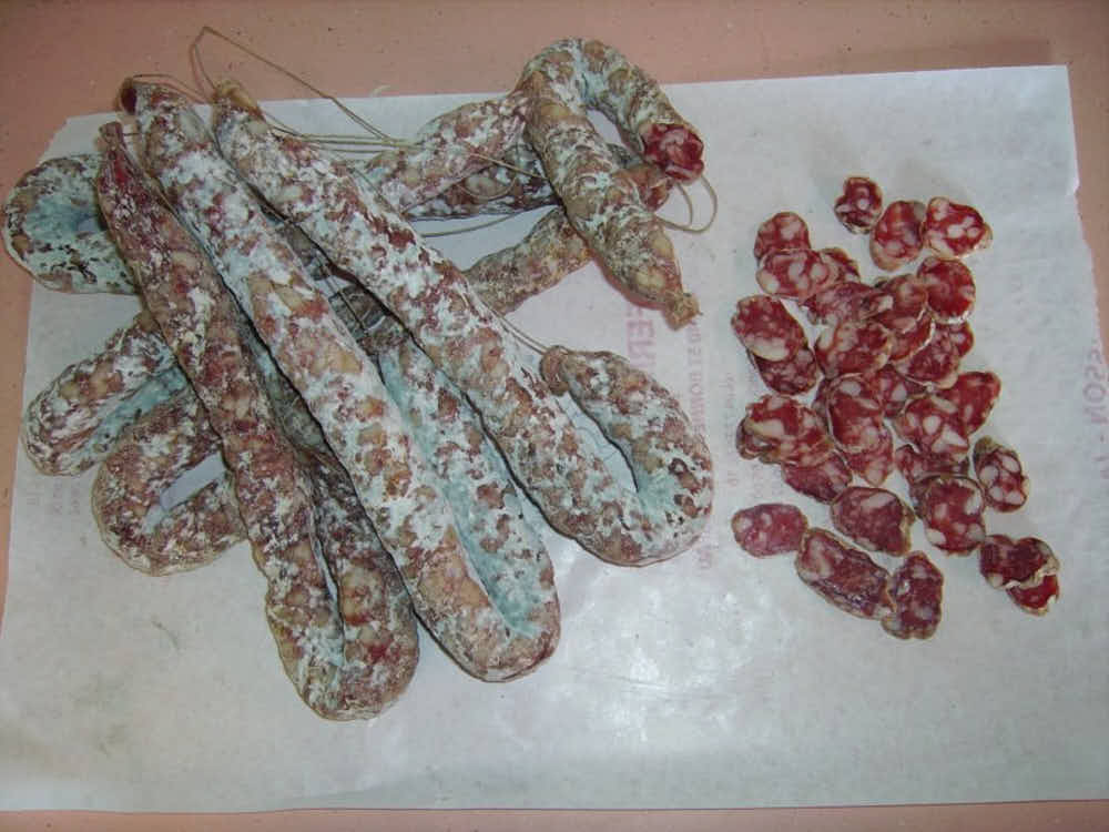 green mold on salami