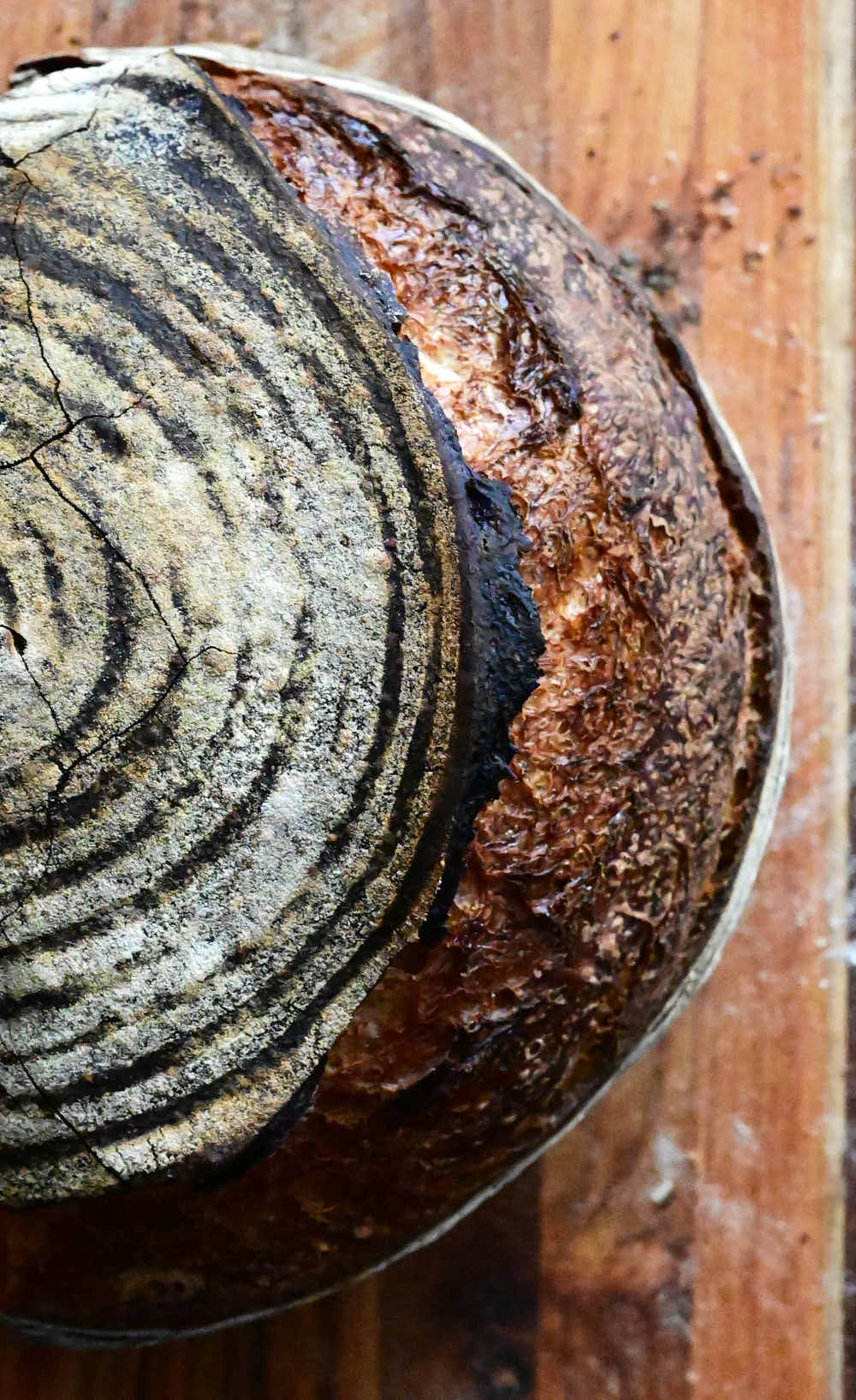 Dark crackly crust of sourdough bread.