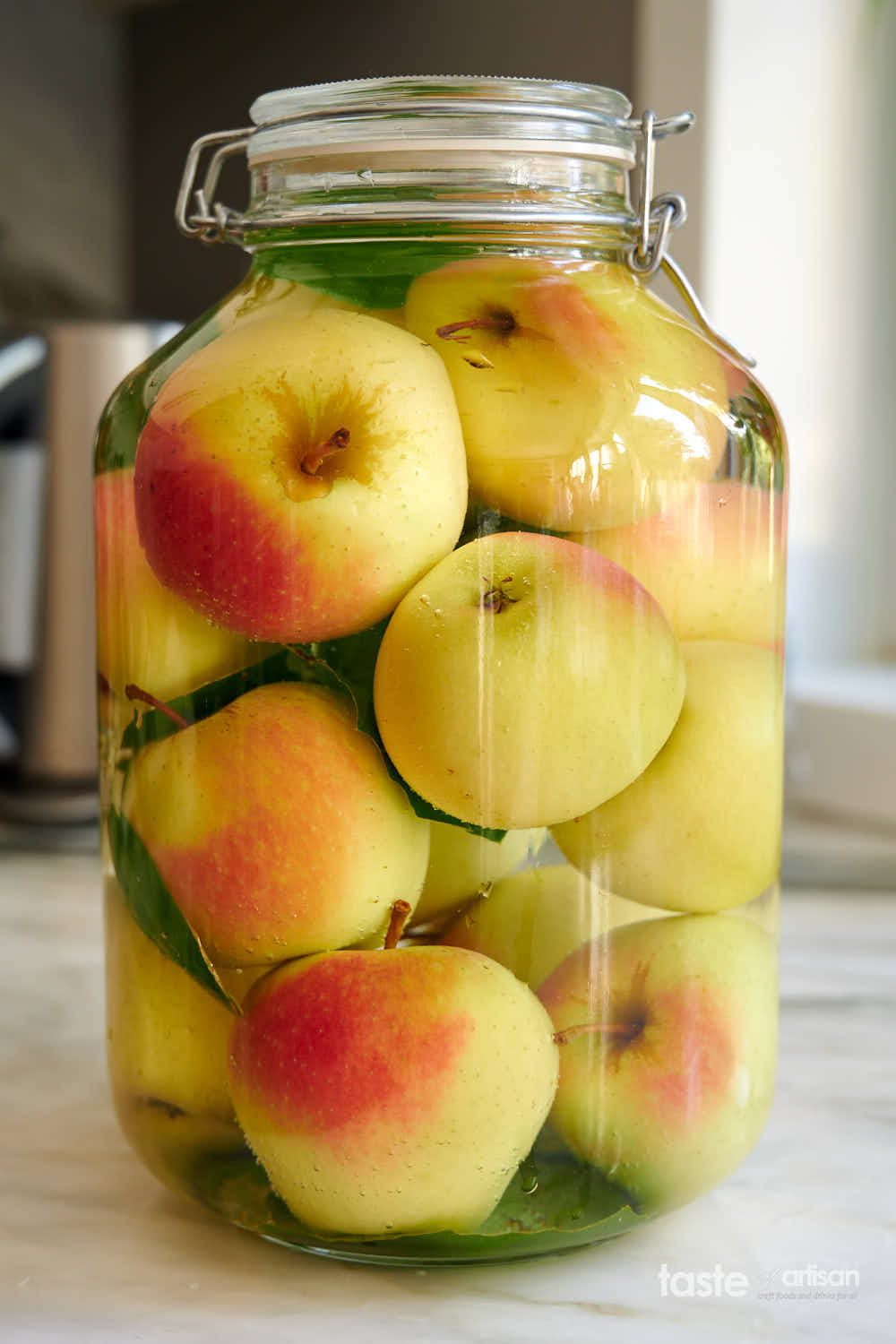 Apples fermenting in a large jar.