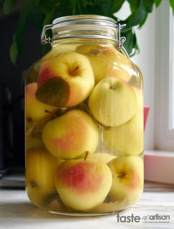 Apples completed fermentation.